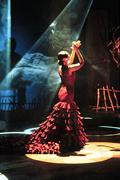 1204525112_Flamenco Show 1_240x180