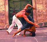 1204777646_Capoeira from Brazil_240x180